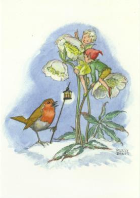 Molly Brett - Elfjes zitten op een bloem bij roodborstje