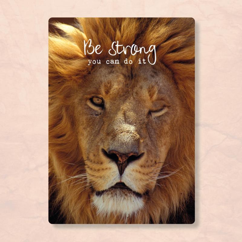 ZintenZ - Be strong