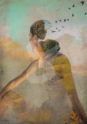 Catrin Welz-Stein - Summerdream