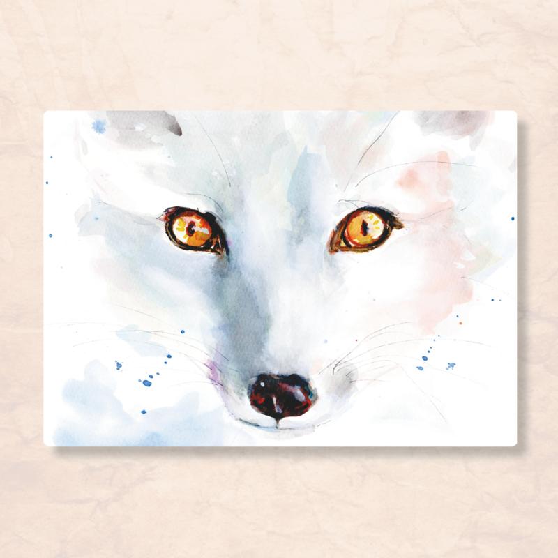 Veer Illustratie - Wolf