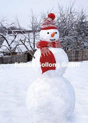 Studio BP - Sneeuwpop