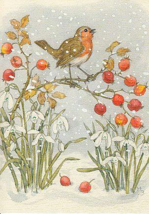 Molly Brett - Roodborstje in de sneeuw