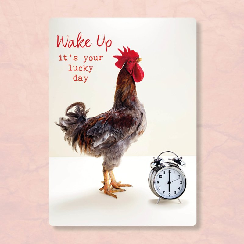 ZintenZ - Wake up