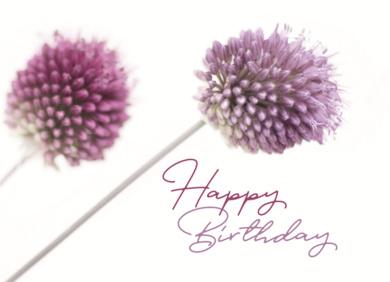 Annemarie Oerer - Happy Birthday