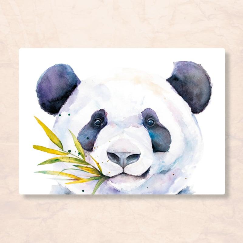 Veer Illustratie - Panda