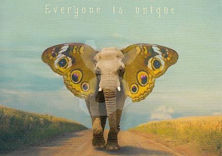Stephan Bierling  - Everyone is unique