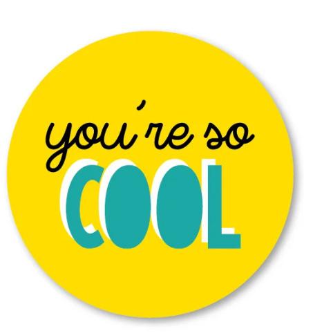 Sticker / Sluitsticker You're so cool (Rond 40mm) Studio schatkist 5 stuks voor €0,80