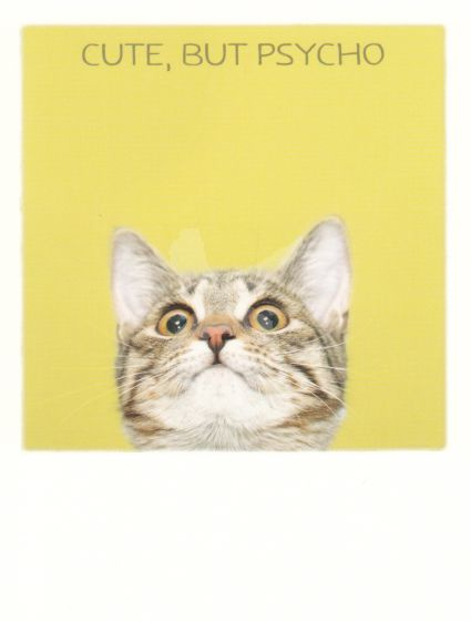 PolaCard - Psycho Cat