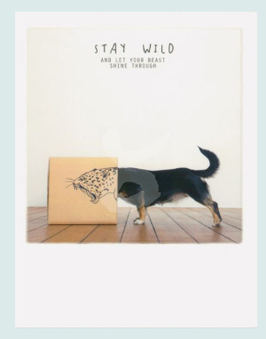 PolaCard - Wild Dog (stay wild and let your beast shine through)