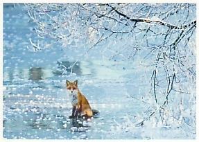 Hendrik Lund - Ice Fox