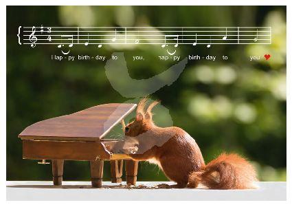 Birgit Roth - Happy Birthday (Eekhoorn)