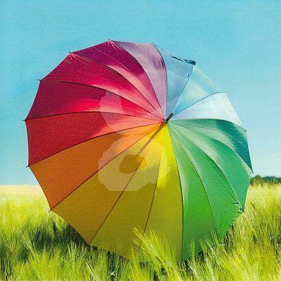 Taurus - Umbrella