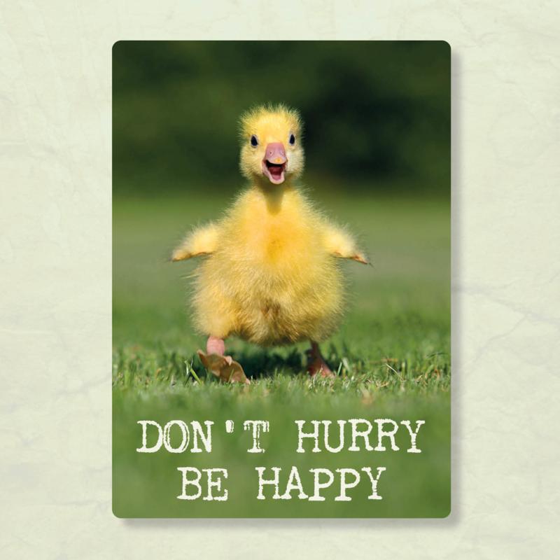 ZintenZ - Don't hurry be happy