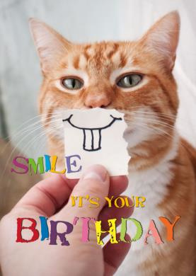 JT Siemer - Smile It's your birthday