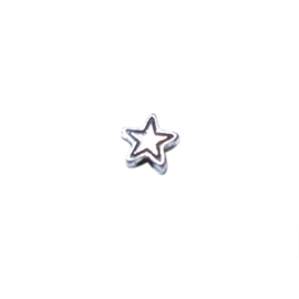 Silver colored bead with a star form