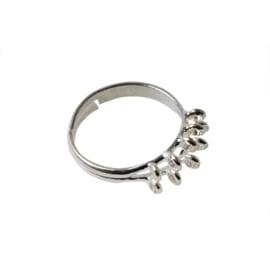 Zilverkleurige ring met 10 oogjes