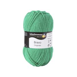 SMC Bravo 8349 Grass - groen - Schachenmayr