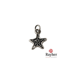 Silver colored metal charm Star