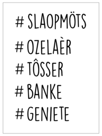 #slaopmöts