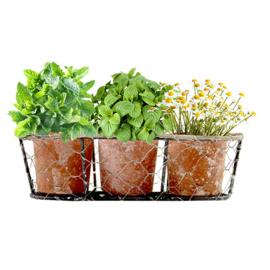 Industrial, Herbs