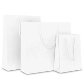 Luxe Papieren Kraft Tassen, Wit