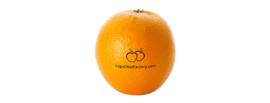 Sinaasappel Met Eigen Logo