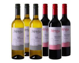 Italiaans Bio wijnpakket