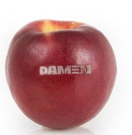 bedrukte nectarine met logo
