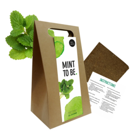 Giftbox met zaden, mint to be