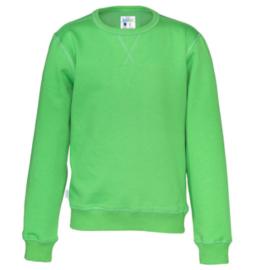 Organic Katoen Crew neck sweater Cottover kid kleur groen
