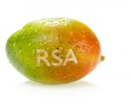Bedrukte mango met logo