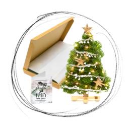 Brievenbus kerstboom