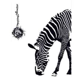 Grote Zwarte Zebra Muursticker