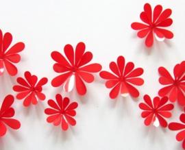 3D Rode Muurbloemen