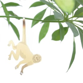 Another Studio - Plant Animal Monkey