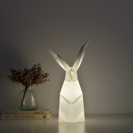 OWL Paperlamps - Rabbit Cotton White