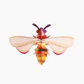 Studio ROOF - Honey Bee