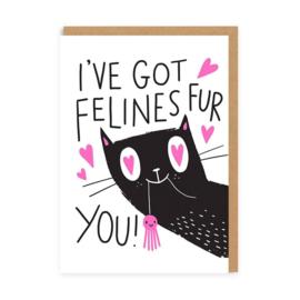 Ohh Deer - I've Got Felines For You