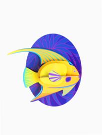 Studio ROOF - Yellow Angelfish