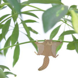 Another Studio - Plant Animal Flying Squirrel