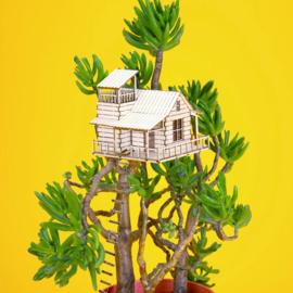 Amazing Plant House - Plant House