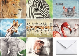 Greeting cards 'Africa' collection 8pcs.