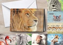 Wenskaarten 'Afrika' collectie 8st.