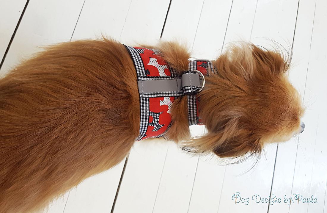 Tuigje - Dagelijkse test van goedkeuring door Expert Lulu - Dog Designs by Paula