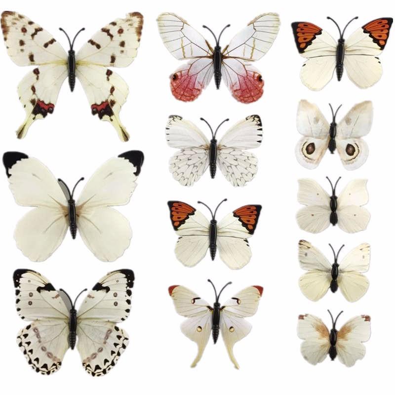 3D muurstickers Vlinder met lijfje Wit