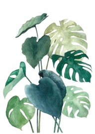 Botanical Green