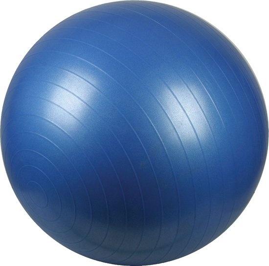 Fitness bal Ø 65 cm