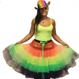 Regenboog rok dames