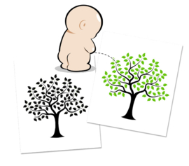 Colour Changing Toilet Sticker Tree - 3 Stickers
