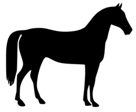 Paard compleet - 200, 500 of 1000 gram